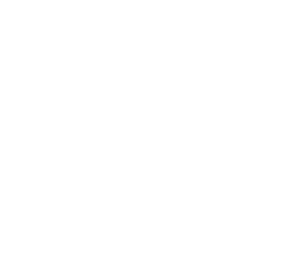 WeddingWire: 10 Years logo